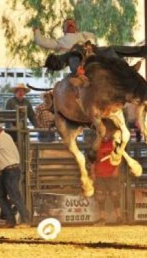 Norco Mounted Posse PRCA Rodeo