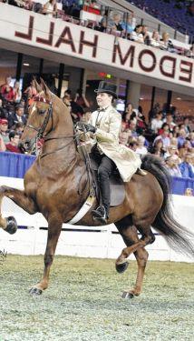 World Championship Horse Show